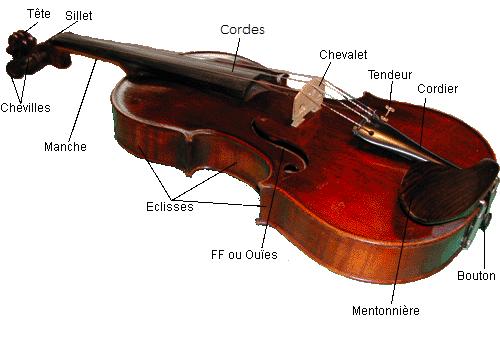 positionnement doigts violon
